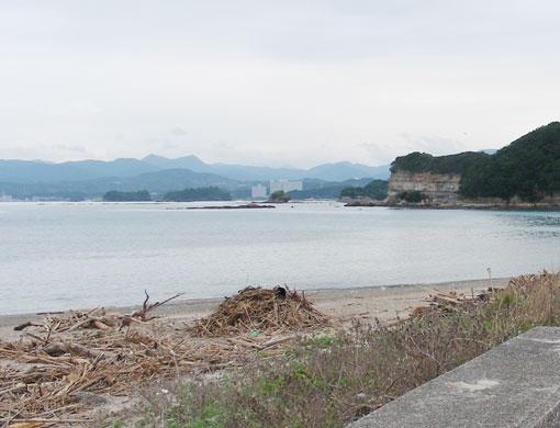 tajirikuzurehana04.jpg
