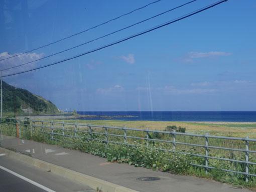 takanosum04.jpg