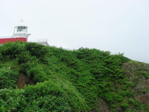 takashimam08.jpg