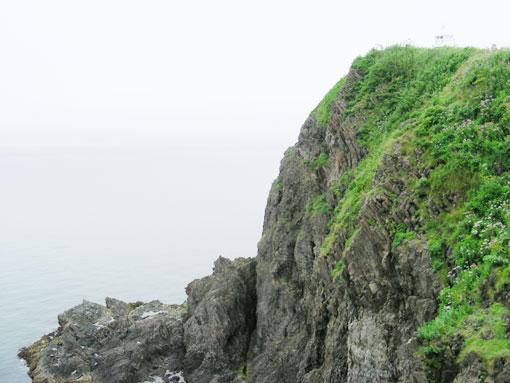 takashimam12.jpg