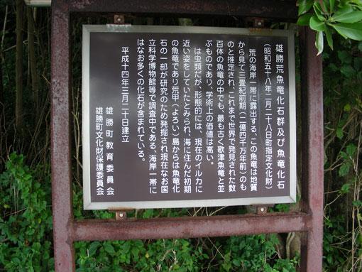 togwzaki13.jpg
