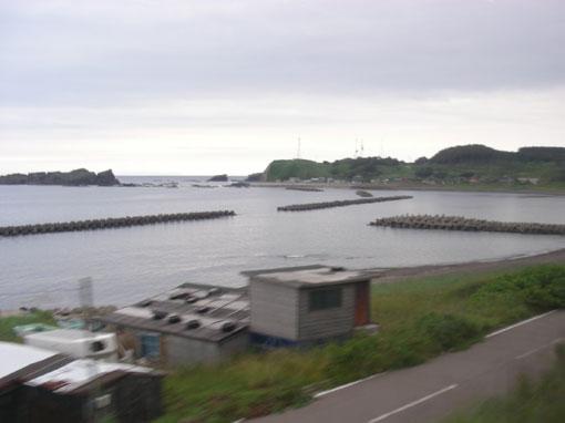 toriizaki06.jpg