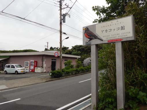tsurunemisaki-10.jpg