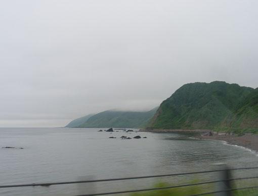 tubakurozaki02.jpg