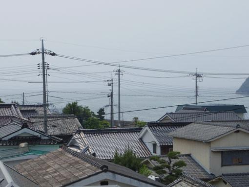 ushizakino01.jpg