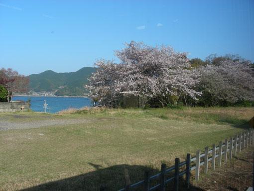 yukitosaki07.jpg
