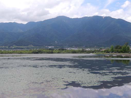 yusyozaki-11.jpg