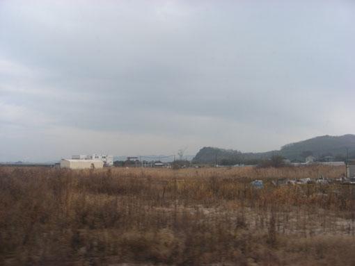 hanazurasaki07.jpg
