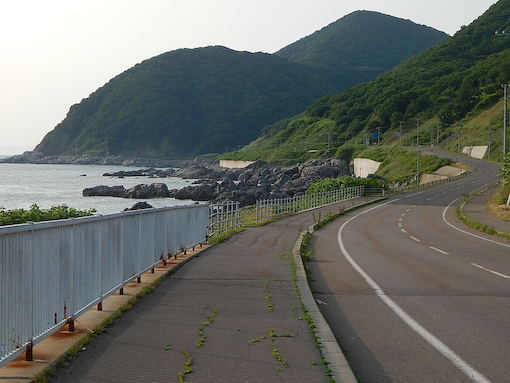 hogoshim-8.jpg