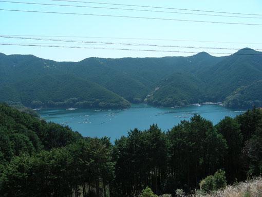 mikizaki11.jpg