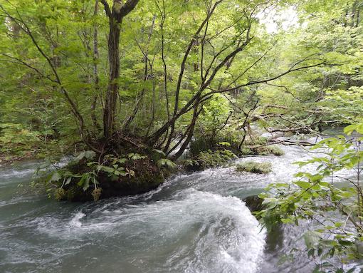 oirasegawa-7.jpg