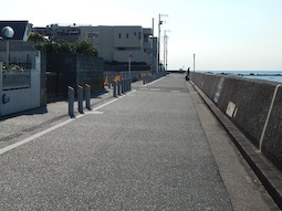shibajyu-1.jpg