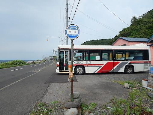 shiraitom-10.jpg