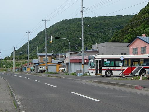 shiraitom-5.jpg