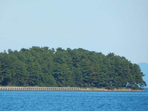 tonosaki-9.jpg