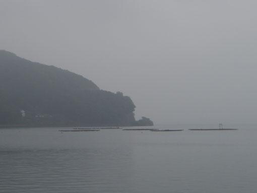 umesaki02.jpg