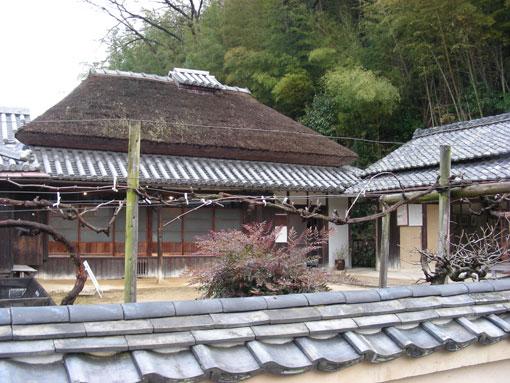 yumeji02.jpg